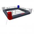 Надувной ринг TS 6,3 х 6,3 м