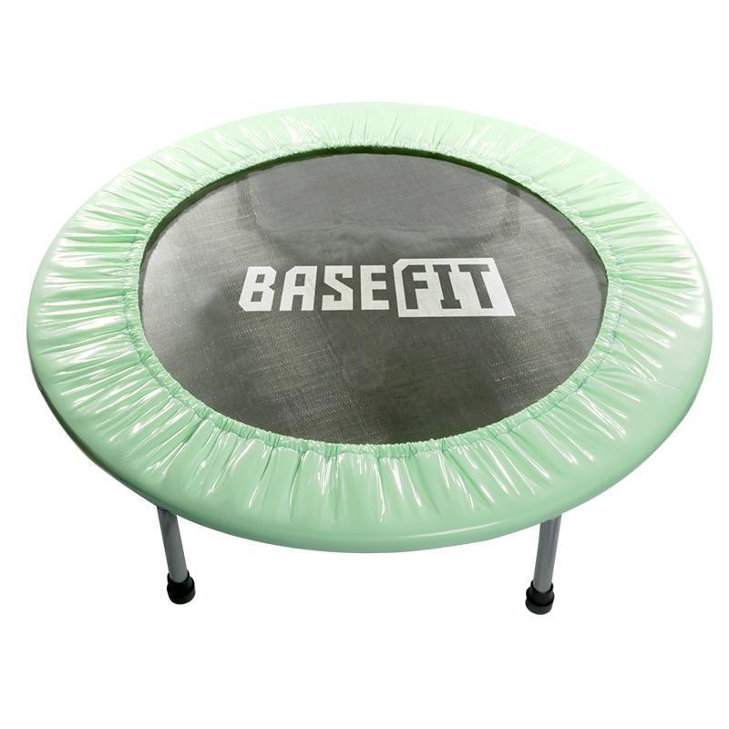 Батут BASEFIT TR-101 D=81 см