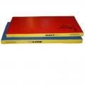 Мат гимнастический 100х50х6 см ( цветной, чехол тент, наполнитель поролон)