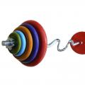 Штанга с цветными обрезиненными дисками в наборе и с гнутым грифом, общий вес 45 кг + 2 грифа для гантелей