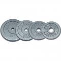 Диск металлический окрашенный NT118  2,5 кг серый диаметр 26, 31мм