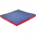 Мат гимнастический 100х100х8 см (цветной, чехол тент, наполнитель поролон)