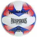 Мяч волейбольный PROSPEROUS