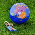 Игровой набор SL: скакалка, мяч детский 22 см